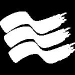 1_icone-flip_0002_perchescegliereiec